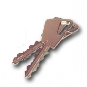 Copie de clé Fichet 666